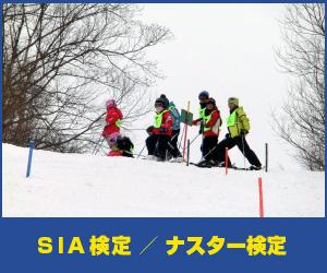 SIA検定/ナスターレース検定